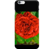 Rosses are Red iPhone Case/Skin