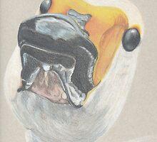 Whooper Swan by Jocoart1