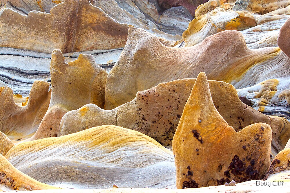 Warriewood rocks by Doug Cliff
