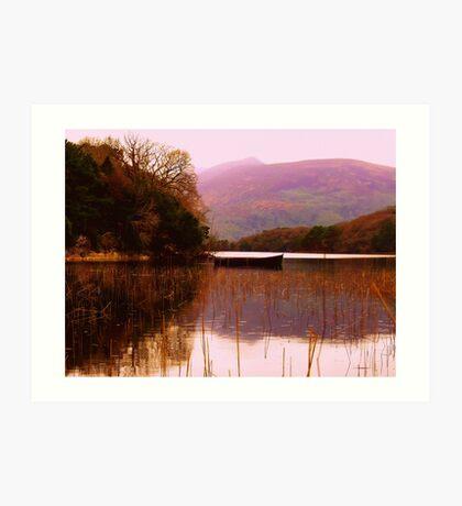 Ireland Art Print