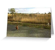 chooks on a country road Greeting Card