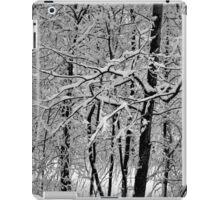 Winter Time iPad Case/Skin
