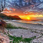 Beach by Cheryl Styles