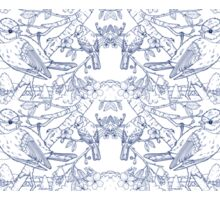 Blue Tit Toile de Jouy Inspired Blue Sticker