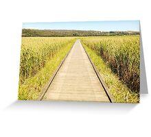 Tamar Island Boardwalk Greeting Card