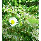 Spring is here iPad Case by Sarah Russell