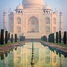 Taj Mahal Dawn Reflection by Inge Johnsson