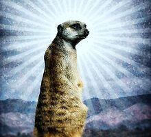 Meerkat Enlightenment by Thomas Gehrke