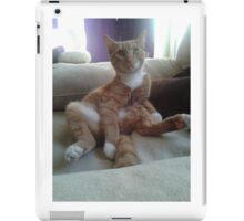 cat,ginger cat, iPad Case/Skin
