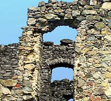 Windows in Ruin Walls by MarkusTheLion