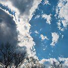 God's Amazing Sky by Penny Rinker