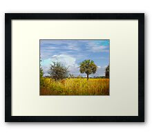 Fall in the Tropics Framed Print