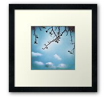 Skyward Framed Print