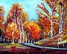 Autumn in the Carolinas by Jim Phillips