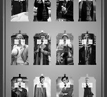 The Twelve Doctors by Jayne Plant