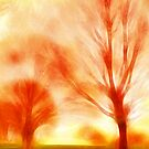 Fire trees by shalisa
