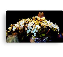 colorful and fragrant, Orchid flowers Canvas Print