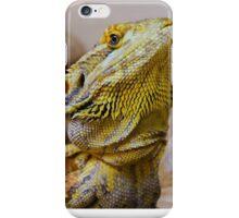 Bearded Dragon iPhone Case/Skin