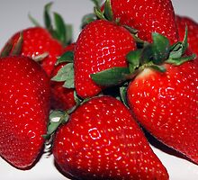 Strawberries by Pamela  Vassallo
