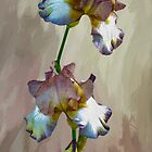 For The Love Of Iris by Diane Schuster