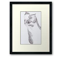 Cat (ink) Framed Print