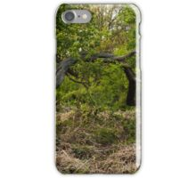 Richmond Park iPhone Case/Skin