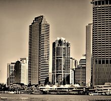 Brisbane City From the River by wallarooimages