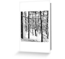 Winter Wanderlust Greeting Card
