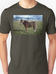 Shaggy Pony Unisex T-Shirt