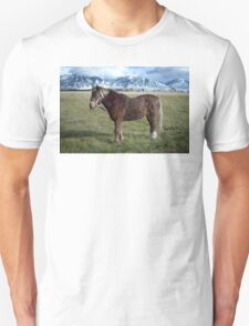 Shaggy Pony Unisex T-Shirt