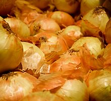 Yellow Onions by Robert Meyers-Lussier