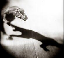 { rex } by Lucia Fischer