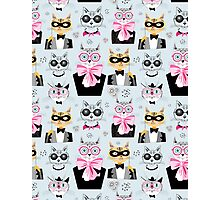 pattern cats hipsters Photographic Print