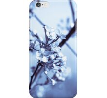 Nature Photography iPhone Case/Skin