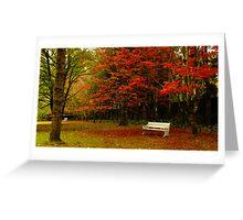 Mt Wilson - Breenhold Greeting Card