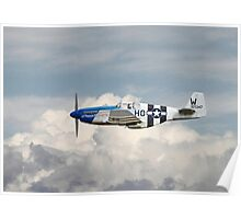 P51 Mustang Gallery - No2 Poster