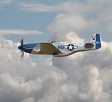 P51 Mustang Gallery - No3 by warbirds
