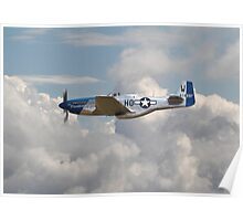 P51 Mustang Gallery - No3 Poster