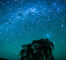 Stanthorpe Stars by Martin Canning