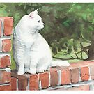white cat on a brick wall watercolor by Mike Theuer