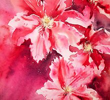 Raspberry Fizz by Ruth S Harris