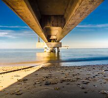 Under the Pier by robertrogers