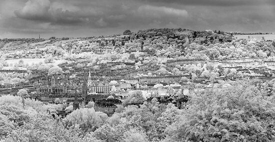 Bath City View by Chris Tarling