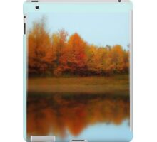 maine in color iPad Case/Skin