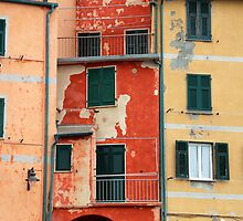 All About Italy. Piece 5 - Riomaggiore Colors by Igor Shrayer