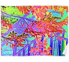 Vine Cover House Nahalem Oregon Poster