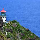 Makapuu Lighthouse by Lucy Adams