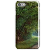 Southern Country Road iPhone Case/Skin
