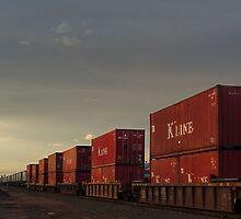 Dusk Train by johnny gomez