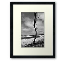 Barren Land Framed Print
